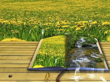 草原で読む絵本